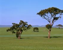 Retirement Villages South Australia